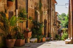Oude straat in Pitigliano-hoogtepunt van bloempot Royalty-vrije Stock Foto's