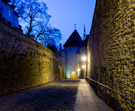 Oude straat in Tallinn Royalty-vrije Stock Foto's