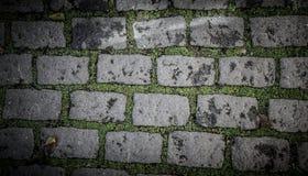Oude straatstenen met gras Achtergrond Royalty-vrije Stock Afbeeldingen