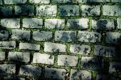 Oude straatstenen met gras Achtergrond Royalty-vrije Stock Afbeelding