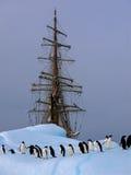 Oude tallship of zeilboot met adeliepinguïn Stock Foto