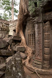 Oude Tempel in ANKOR Wat Kambodia Royalty-vrije Stock Afbeeldingen