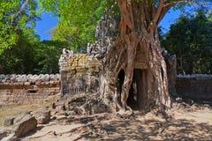 Oude tempel Preah Khan in complexe Angkor stock afbeelding