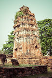 Oude Tempel van Ayuthaya, Thailand Royalty-vrije Stock Afbeelding