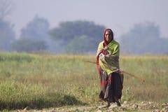 Oude tharuvrouw die op gebieden in Nepal lopen Stock Afbeelding