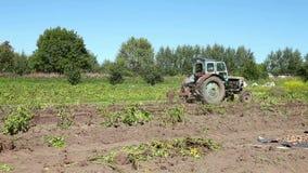Oude tractor bij het aardappelgebied stock video