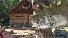 Oude Trapper& x27; s cabine in het Noordelijke hout royalty-vrije stock fotografie