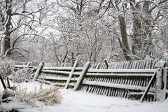 Oude tuin door de winter Royalty-vrije Stock Foto