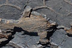 Oude uitbarstingsband die toont stock foto