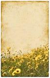 Oude Uitstekende Bloemen Royalty-vrije Stock Afbeeldingen