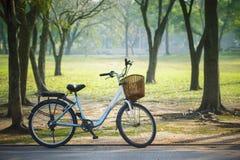 Oude uitstekende fiets in openbaar park met groen aardconcept Stock Foto