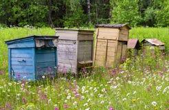 Oude uitstekende houten multi-colored bijenkorven voor bijen op een oude bijenstal onder weidegrassen en bloemen, productie van h Stock Afbeelding