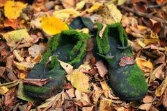 Oude uitstekende laarzen in autmnbladeren Stock Afbeelding