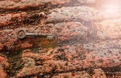 Oude uitstekende roestige sleutel Royalty-vrije Stock Foto's