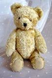 Oude uitstekende teddybeer Royalty-vrije Stock Fotografie