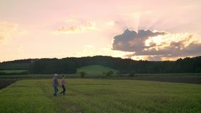 Oude vader die met zijn volwassen zoon op tarwe of roggegebied, mooie zonsondergang op achtergrond lopen stock footage