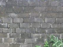 Oude van de de bouwmuur textuur als achtergrond Stock Foto