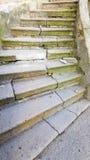 Oude verbrijzelde steentreden met diepe barsten en groen mos royalty-vrije stock fotografie