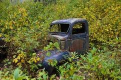 Oude verlaten auto die door struik worden teruggewonnen stock foto
