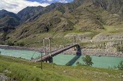 Oude verlaten brug over de rivier Katun, Altai, Rusland Royalty-vrije Stock Foto