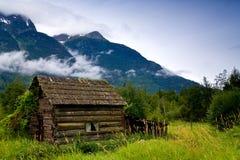 Oude, verlaten cabine in een overwoekerde weide stock foto's