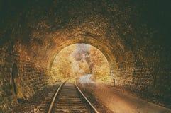 Oude verlaten spoorwegtunnel royalty-vrije stock fotografie