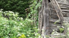 Oude vernietigde houten muur op het huis stock video
