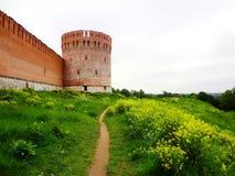 Oude versterkte muur op de heuvel Royalty-vrije Stock Afbeelding