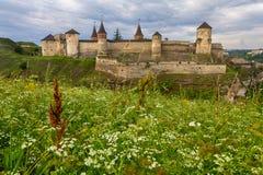 Oude vesting kamenetz-Podolsky en wilde bloemen Stock Foto's
