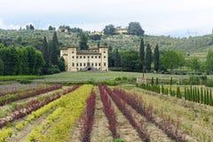 Oude villa dichtbij Pistoia (Toscanië) Stock Foto