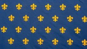 Oude vlag van het koninkrijk van Frankrijk royalty-vrije stock fotografie