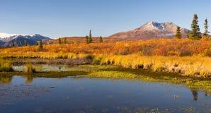 Oude Volcano Sits Dormant Near Alaskan-Vijver stock foto
