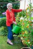 Oude Vrouw bij de Tuin met Gieter Stock Foto