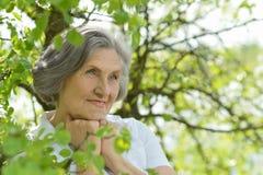 Oude vrouw dichtbij de boomtakken Stock Foto