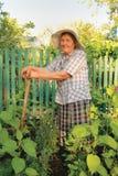 Oude vrouw die in de tuin werkt Royalty-vrije Stock Afbeeldingen