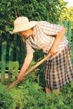 Oude vrouw die in de tuin werkt Royalty-vrije Stock Foto