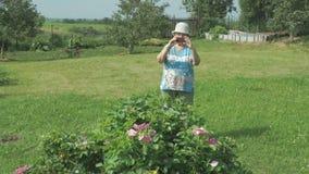 Oude vrouw die het landschap van park fotograferen stock footage