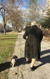 Oude vrouw die met haar hond lopen Stock Afbeeldingen