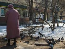 Oude vrouw in een laag en baret voedende duiven stock foto