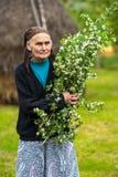 Oude vrouw het plukken haagdoornbloemen Stock Foto's