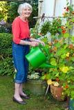 Oude Vrouw het Water geven Installaties bij de Tuin Stock Afbeelding
