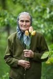 Oude vrouw met bloemen stock foto's