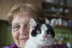 oude vrouw met een kat stock afbeeldingen