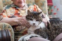 Oude vrouw met haar huisdier Stock Afbeelding