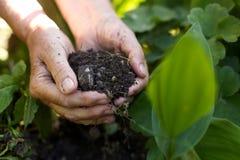 Oude vrouw met handvol van grond in tuin Royalty-vrije Stock Foto
