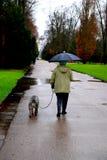 Oude vrouw met hond Stock Afbeelding