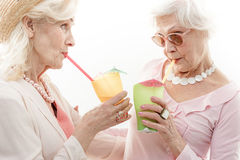 Oude vrouwen die alcoholdrank proeven Stock Afbeelding