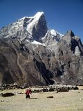 Oude vrouwen in Himalayagebergte Royalty-vrije Stock Afbeeldingen