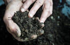 Oude vrouwenhanden die verse grond houden Symbool van de Lente Stock Foto's