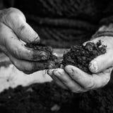 Oude vrouwenhanden die verse grond houden Symbool van de Lente Royalty-vrije Stock Afbeeldingen